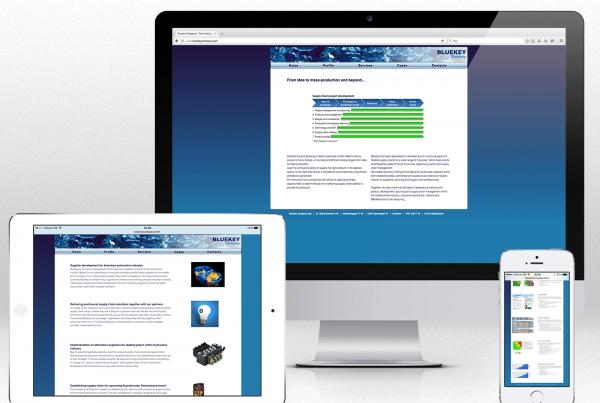 Website for Bluekey Company