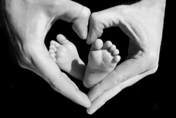 New Born baby fusser baby fødder gemt i faders hænder